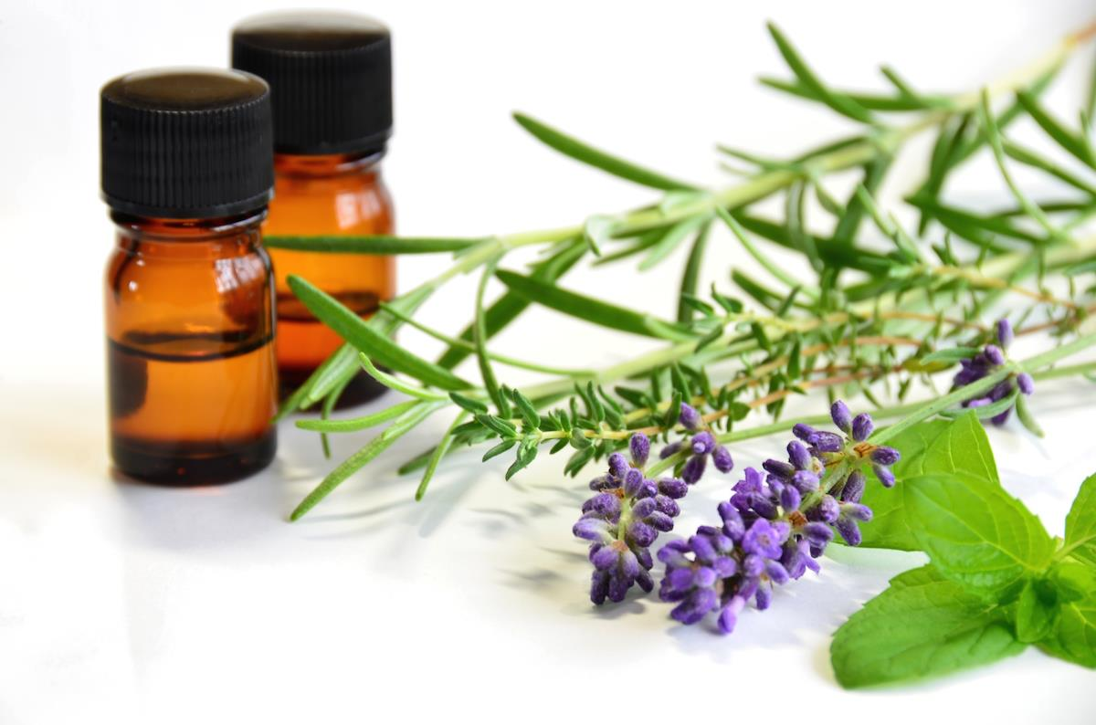 香りで集中力アップ。ハーブ系アロマオイルの効能と簡単な使い方