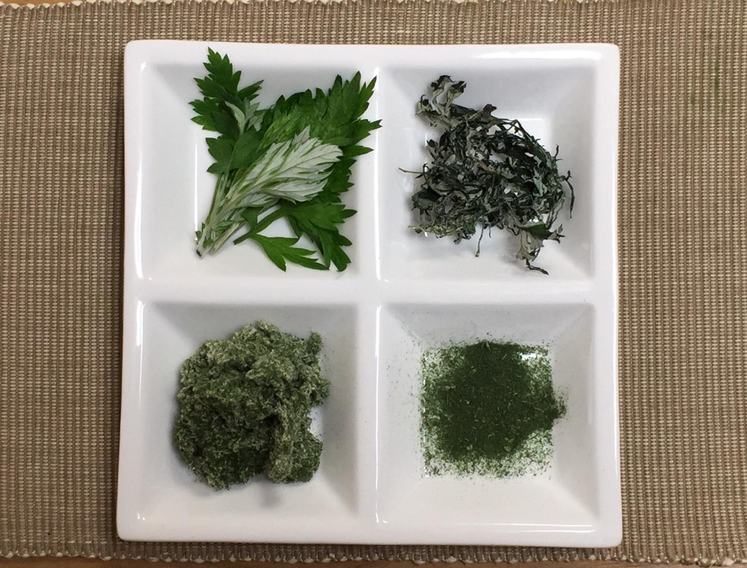 おやつに使える野草「ヨモギ」の見分け方と下処理&保存法|おかわりおやつ