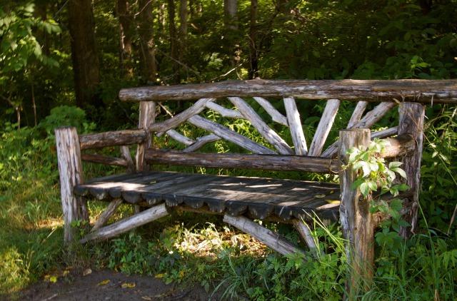 第53回 曲がり木のベンチができあがるまで