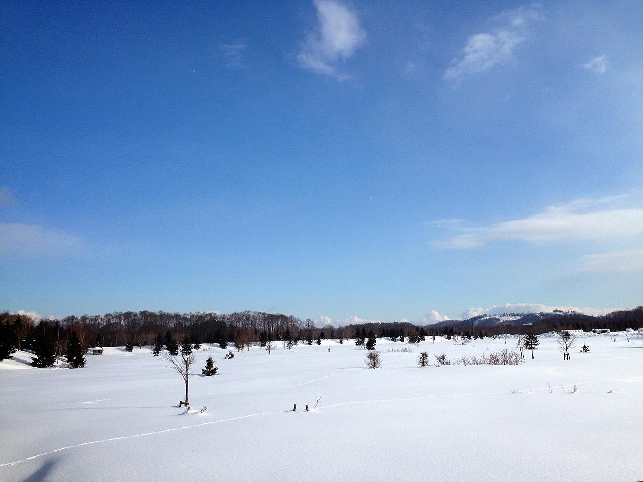 函館の雪原